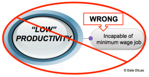 Low productivity assumptions